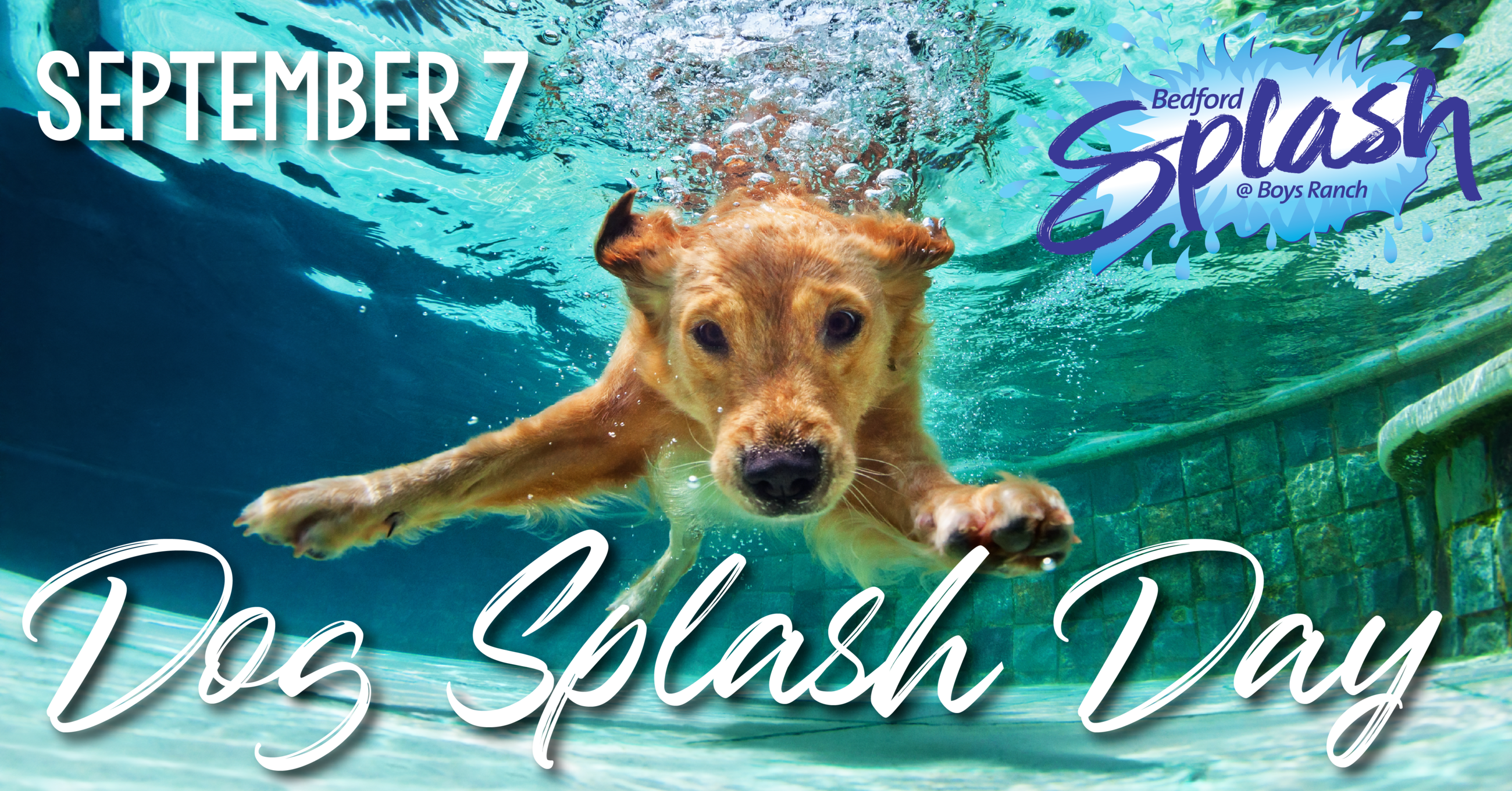 dog splash event graphic - 2-01